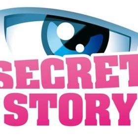 Secret Story 2013