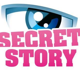 Secret Story - Saison 6