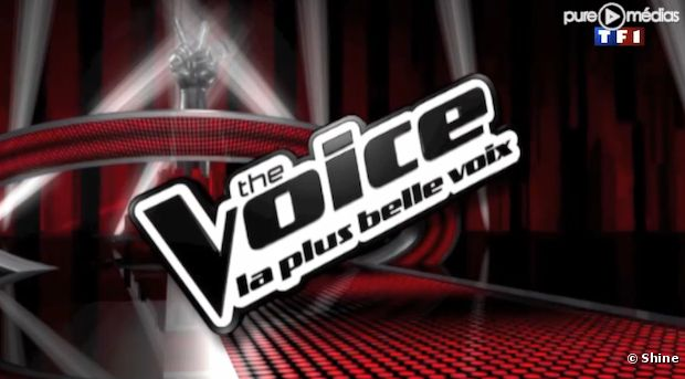Le logo de l'émission &;the voice, la plus belle voix&; sur tf1
