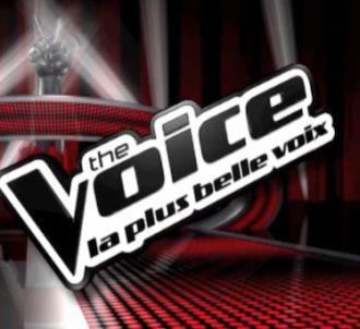 Le logo de l'émission 'The Voice, la plus belle voix' sur...