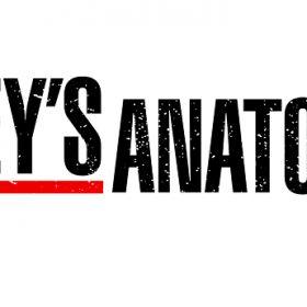 Grey's Anatomy - Saison 1