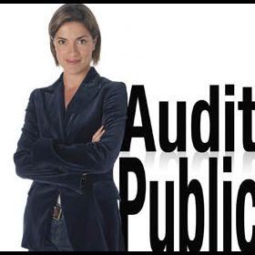 Audit public